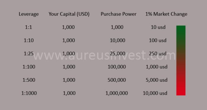 Aureus Invest leverage
